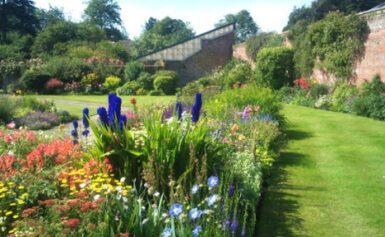 Landscape Gardening in Kent – Your Garden of England