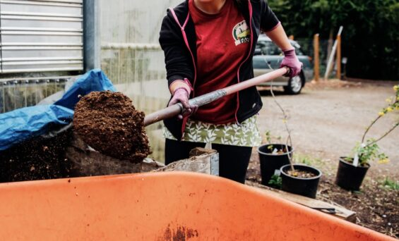 Five Things to Keep in Mind when Building a Living Soil